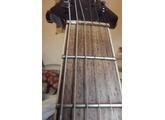 Spear Guitar T-200