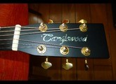 Tanglewood TW15 BABY CE 3/4