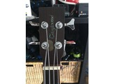 Tanglewood TW155 A/Bass