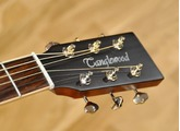 Tanglewood TW170 SS