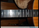 Taylor 800 Series Limited
