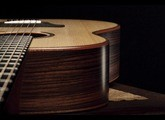 Taylor Builder's Edition 717
