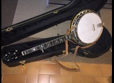 Tennessee Guitars Banjo 5