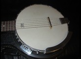 Tennessee Guitars Banjo 6