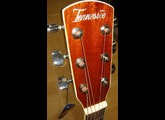 Tennessee Guitars D 18