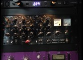 Thermionic Culture The Fat Bustard