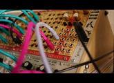 Tiptop Audio Micro Zeus (49565)