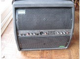 Trace Acoustic TA100R (18275)
