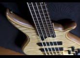 Tune Guitar Technology TWB5