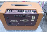 Ultrasound Amplifiers ds4