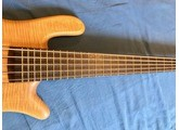 Warwick Custom Shop Streamer Stage I 5