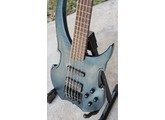Warwick Vampyre SN5 Germany 5 String Bass and Roadcase  57 (1)