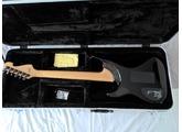Washburn N4 Flametop