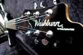 Washburn PS100