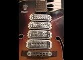 Welson Guitar
