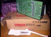 Yamaha ASIB1