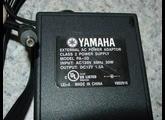 Yamaha PA-5D