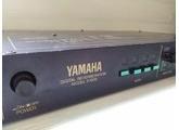 Yamaha R1000