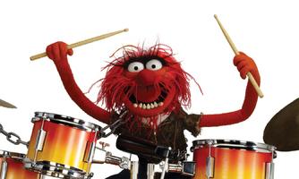 Animal Muppet Show