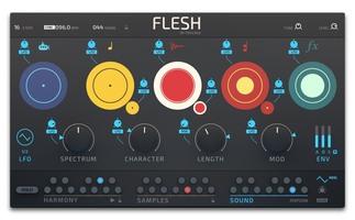 Native Instruments Flesh : Flesh3