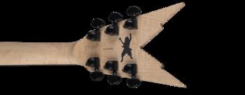 Dean Guitars Razorback DB Floyd DNA Spatter : rzrdbfdna v6
