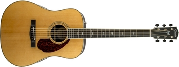 Fender PM-1 Deluxe Dreadnought : 1