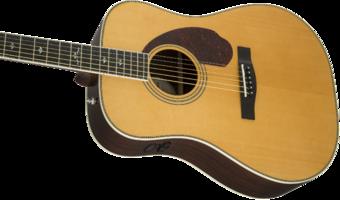 Fender PM-1 Deluxe Dreadnought : 0960270221 gtr cntbdyleft 001 nr