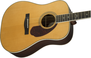 Fender PM-1 Deluxe Dreadnought : 0960270221 gtr cntbdyright 001 nr