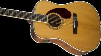 Fender PM-1 Standard Dreadnought : 0960250221 gtr cntbdyleft 001 nr