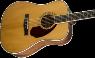 Fender PM-1 Standard Dreadnought : 0960250221 gtr cntbdyright 001 nr