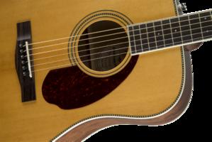 Fender PM-1 Standard Dreadnought : 0960250221 gtr frtbdydtl 001 nr