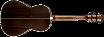 Fender PM-2 Deluxe Parlor : 0960272221 gtr back 001 rr