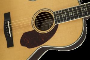 Fender PM-2 Deluxe Parlor : 0960272221 gtr frtbdydtl 001 nr