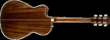 Fender PM-3 Standard Triple-0 : 0960251221 gtr back 001 rr