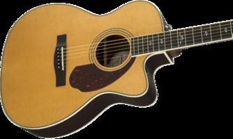 Fender PM-3 Deluxe Triple-0 : 0960271221 gtr cntbdyright 001 nr