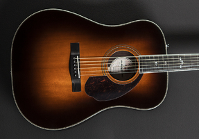 Fender PM-1 Deluxe Dreadnought : 007263