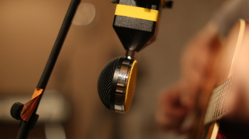 Neat Microphones King Bee : 148A0145.JPG