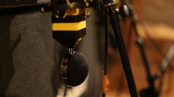 Neat Microphones Worker Bee : 148A0166.JPG