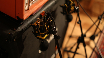 Neat Microphones King Bee : 148A0165.JPG