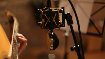 Neat Microphones King Bee : 148A0140.JPG