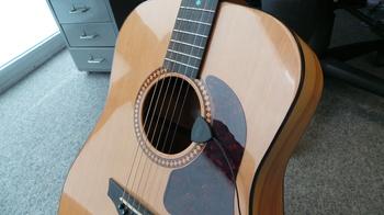 IK Multimedia iRig Acoustic : garrison.JPG