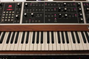 Moog Music MemoryMoog LAMM : 004.JPG