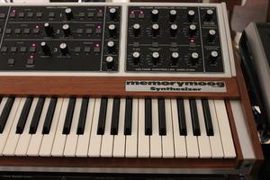 Moog Music MemoryMoog LAMM : 005.JPG