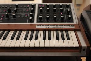 Moog Music MemoryMoog LAMM : 012.JPG