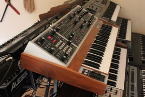 Moog Music MemoryMoog LAMM : 015.JPG