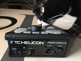 TC-Helicon Perform-V : Back and Cat