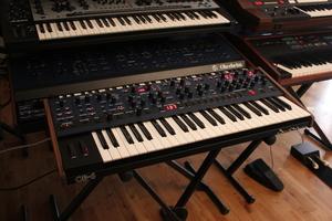 Dave Smith Instruments OB-6 : OB 6 04.JPG
