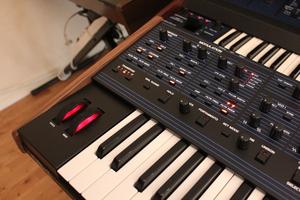 Dave Smith Instruments OB-6 : OB 6 20.JPG