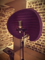 Aston Microphones Halo : Halo 1