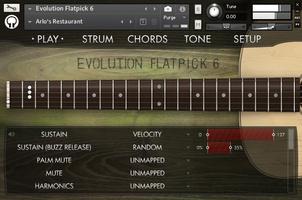EvolutionFlatpick6Interface